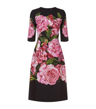DOLCE & GABBANA Rose Print Cady Dress at Harrods